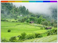 The Green Town - Ukhrul Manipur