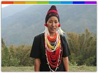 Art and Handicrafts Nagaland