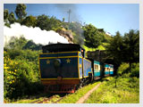 Train at Ooty